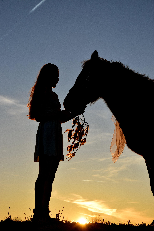 Barn og hester hører sammen